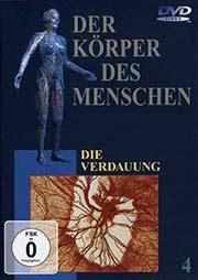 Der K�rper des Menschen 4 - Ein Unterrichtsmedium auf DVD