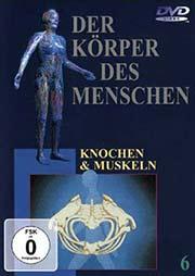 Der K�rper des Menschen 6 - Ein Unterrichtsmedium auf DVD