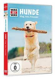 Hunde - Ein Unterrichtsmedium auf DVD